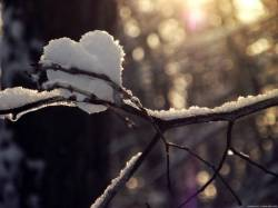 From winter with love